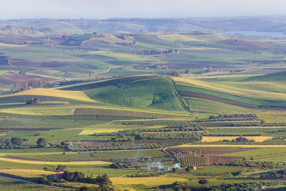Valle del Belice vista da Salemi